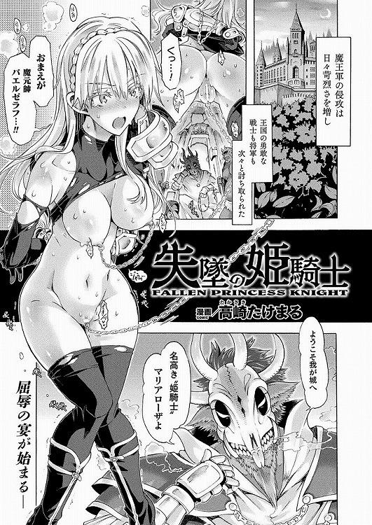 失墜の姫騎士_00001